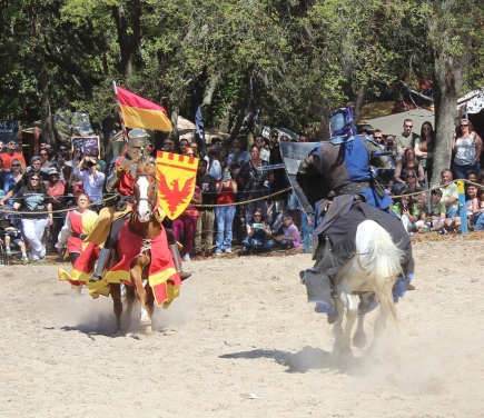 52% off Admission to the Bay Area Renaissance Festival 2020