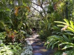 50% off an Annual Family Membership at Sunken Gardens